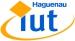 Logo IUT de Haguenau
